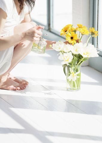 あなたの喉が渇いたときは、植物も喉が渇いている。 | 心が軽くなる30の方法