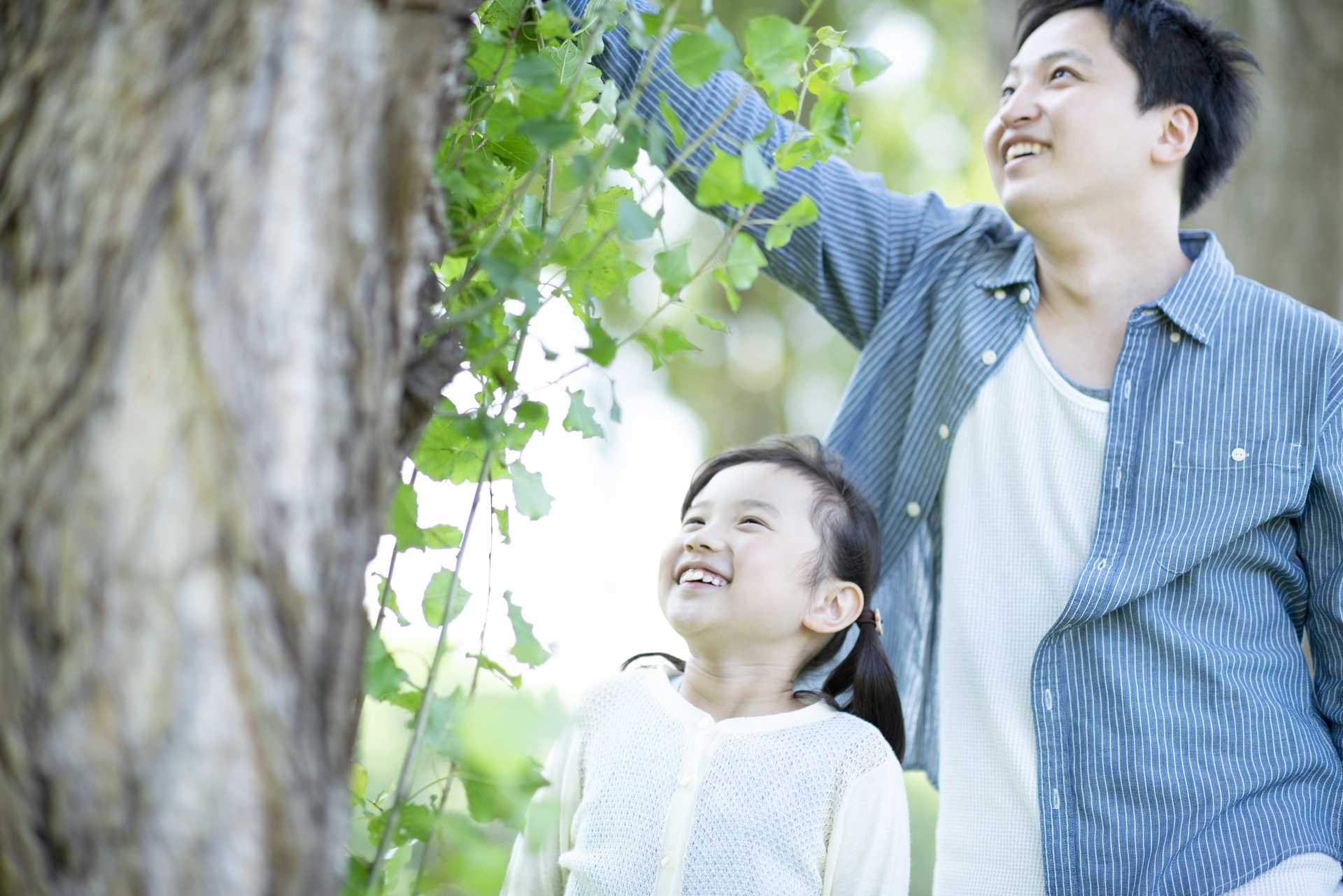 散歩の達人は、手を使って生命力を感じ取る。 | 散歩の楽しみ方に気づく30のポイント