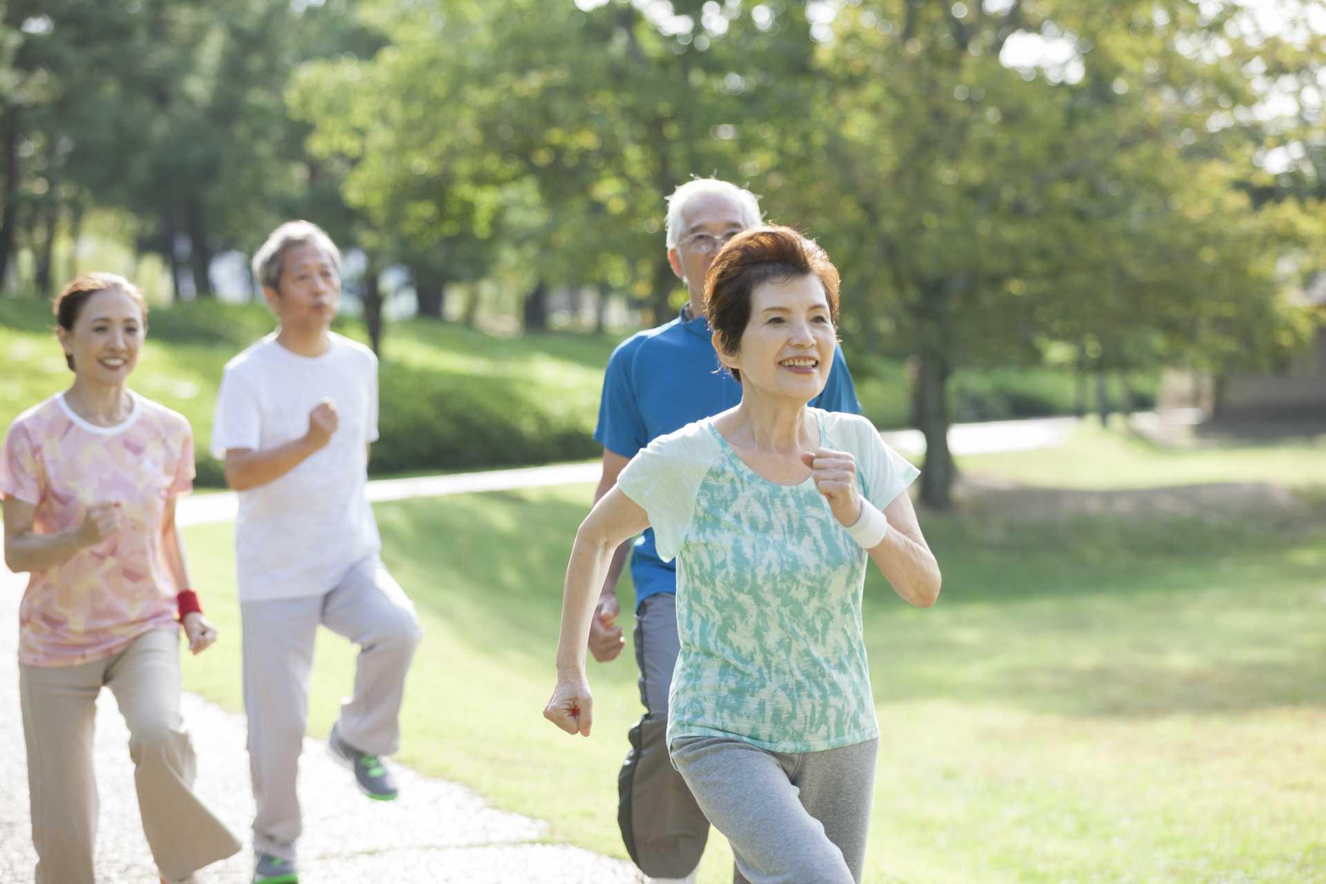歩くことは、若々しい体と脳を保つ方法である。 | 散歩の楽しみ方に気づく30のポイント